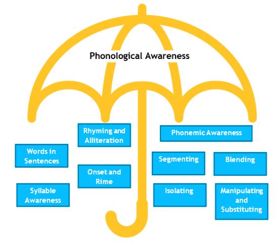 Phonological Awareness Diagram