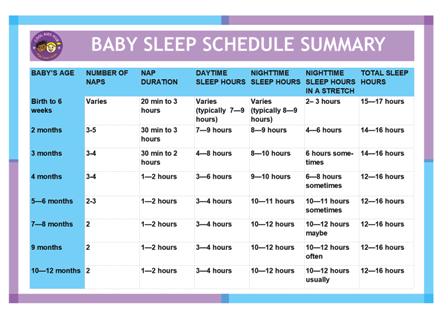 Baby Sleep Schedule Summary