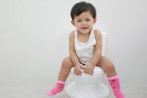 Best Potty Training Toilet for Girls