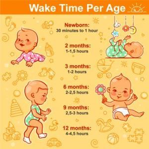 Sleep Schedule 0-12 Months