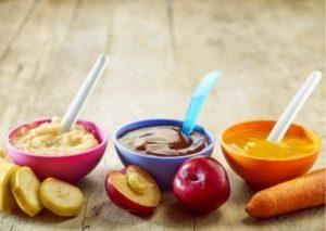 Pureed Foods